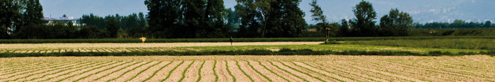 espaces agricoles