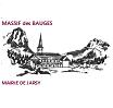 Jarsy logo site
