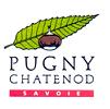 pugny-chatenod-site